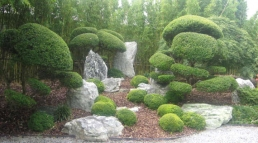 Balance Your Garden with Feng Shui